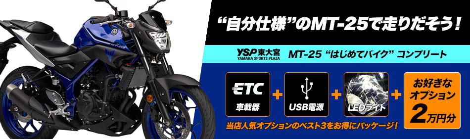 MT-25はじめてバイクコンプリート