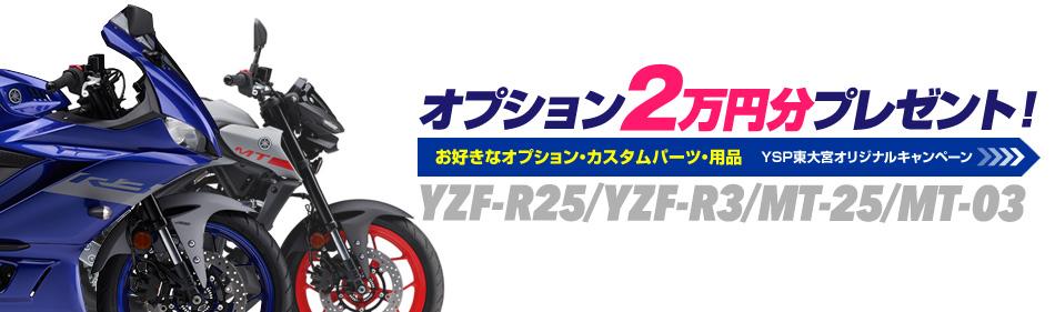 オプション2万円分プレゼント!